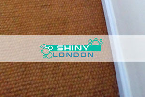 shiny london carpet