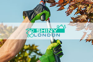 shiny london gardeners