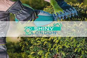 shiny london gardening